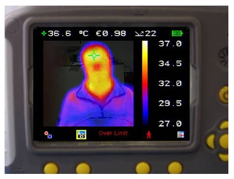 25% Visual image 75% Thermal image